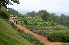 """Vegetable Garden at Monticello    """"The man who has planted a garden feels that he has done something for the good of the world."""" - Vita Sackville-West"""