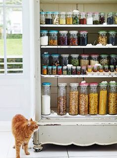 Need to find an old fashioned cabinet like this and then use weck glass containers to keep everything in... and as last little detail... a kitty :)