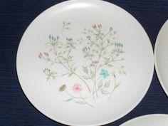 Ovation Westinghouse Melmac plate