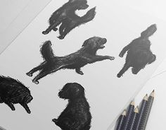 """Check out new work on my @Behance portfolio: """"My dog"""" http://be.net/gallery/34653307/My-dog"""