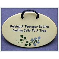 Raising a Teenager is Like Nailing Jello to a Tree