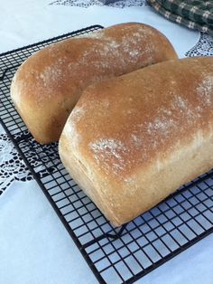 Homemade Oatmeal Bread – .02/loaf « Bread « Starches « Recipes By Ingredient « Recipes « Broke & Healthy