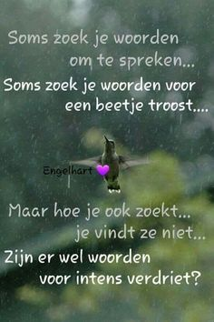Hollandse woorden