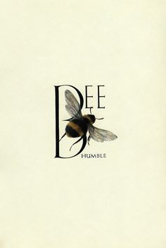'Bee Humble' - Illustration by Marie Angel, from An Animated Alphabet. I Love Bees, Bee Art, No Rain, Bee Happy, Save The Bees, Busy Bee, Bees Knees, Queen Bees, Bee Keeping