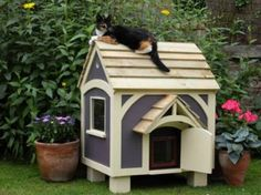 outdoor cat house how to build - Google Search