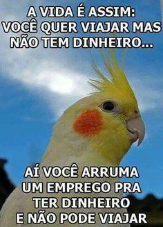 Humor ...