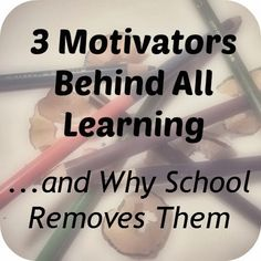 Three Motivators Behind All Learning...and Why School Removes Them  -- Unschool