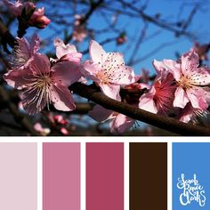 25 Color Palettes Inspired by the Pantone Fall 2017 Color Trends Spring Color Palette, Colour Pallette, Color Palate, House Color Schemes, Colour Schemes, Color Trends, Color Combinations, Color Stories, Color Swatches