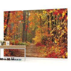 WALL MURAL PHOTO WALLPAPER PICTURE (4-002PP) Forest Wood Landscape Trees