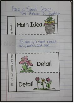 Main Idea & Details - Interactive Notebook