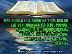 Ele verá o fruto do trabalho da sua alma, e ficará satisfeito; com o seu conhecimento o meu servo, o justo, justificará a muitos; porque as iniqüidades deles levará sobre si. Isaías 53:11