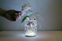 Experimentando con la lámpara Aura