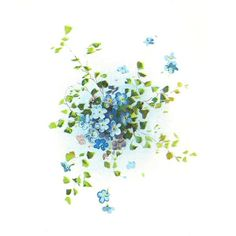 Free Flower Graphic Forget-Me-Not Flowers Clip Art Cluster with Leaves ❤ liked on Polyvore