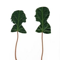 Silhouette portrait cut from leaves, by Jenny Lee Fowler