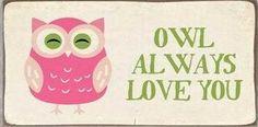 Magnet Owl