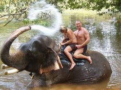 Goa, India: Shabu the showering Elephant