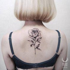 Blackwork/illustrative rose tattoo on the upper back. Tattoo...