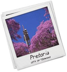 List of Pretoria Shopping Centres Clubs In Brooklyn, Pretoria, Hanging Out, Roots, Students, Places, Lugares