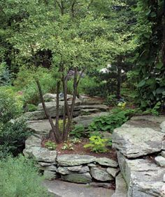 Lush Garden on the Rocks A simple way to increase soil depth is to create raised beds with layered, flat stones.A simple way to increase soil depth is to create raised beds with layered, flat stones. Lush Garden, Shade Garden, Dream Garden, Garden Beds, Sloped Garden, Terraced Garden, Landscaping With Rocks, Backyard Landscaping, Landscaping Ideas