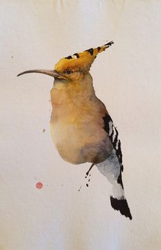 http://www.gladwellpatterson.com/product/hoopoe/
