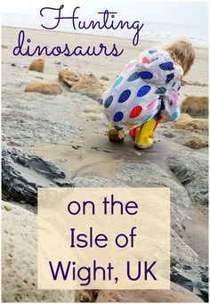 Hunting the Isle of Wight dinosaurs - a weekend away on the Isle of Wight, UK, including a fossil walk to find genuine dinosaur remains, along with the country's oldest theme park at Blackgang Chine, now home to animatronic dinosaurs, plus the rescued big