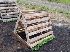 Low Cost & No Cost Trellis Ideas | The 104 Homestead - Trellis your vining vegetables using little to no money. Pallets