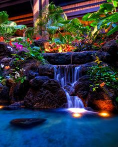 Waterfall, Polynesian Resort
