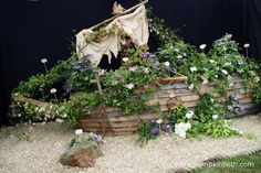 A shipwrecked boat covered in clematis from Floyd's Climbers and Clematis in the Floral Marquee. Pastel Shades, Shades Of Purple, Climber Plants, Rhs Hampton Court, Boat Covers, Annual Flowers, Buy Plants, Garden Show, Mauve Color