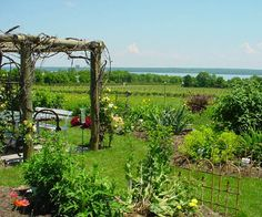 The garden at Anthony Road Winery at Seneca Lake, NY. Visit this local's favorite on our Finger Lakes cycling tour. http://www.classicadventures.com/our-bike-tours/new-york/new-york-keuka-lake-wine-trail-bike-tour.php