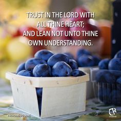 Trust in the Lord with all thine heart; and lean not unto thine own understanding. - Proverbs 3:5 #KJV #Bible