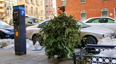 Brooklyn artist transforms discarded Christmas trees into wearable sculptures | Inhabitat New York City