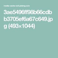 3ae5496ff98b66cdbb3705ef6a67c649.jpg (493×1044)