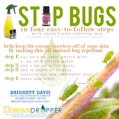 Mosquitoes, bees, ants, gnats, no-seeums = bites, bites, and more bites. Especially on our little ones and pets. Keep those bugs away the natural way. Interested in learning more? Contact me: Bridgett Davis; Member #1801098 bridgettgerald@yahoo.com  #lemondropper #youngliving #essentialoils #theresanoilforthat #bugfree #chemicalfree