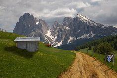 kjero und der Blog Tirol suchen 8 Tirol-Botschafter #lovetirol #kitzalpslove