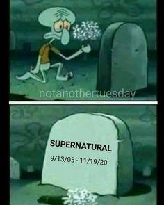 Supernatural 9, Winchester, Memes, Supernatural, Everything, Animal Jokes, Meme