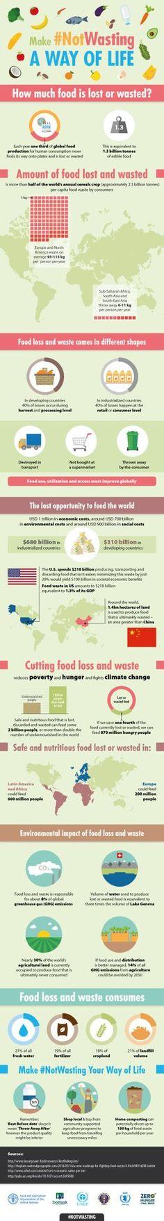 food_waste_final.jpg (275×2048)