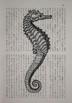 Seepferdchen Print Vintage japanischen Buches Seite Print