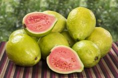 Uses of Guava Tree