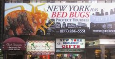 The bedbugs are so bad in New York, that even their 26-story City Department of Health and Mental Hygiene building is infested. (Insert big government irony here.) So far that one infestation has cost taxpayers only $316 million. By the way, this is the second time that the New York City Department of Health and Mental Hygiene has been overrun by bedbugs---since the building opened 3 yrs ago.