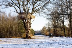 Sologne, France: Your very own tree top house.