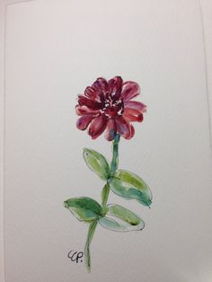 Zinnia Watercolor Card by gardenblooms on Etsy