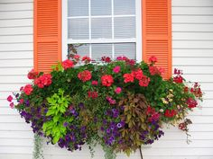 Would love this under kitchen window   How to plant a rockin' window box