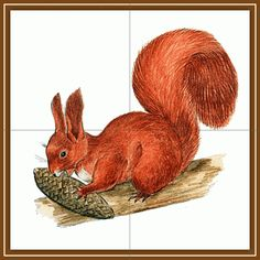 tematicheskaya nedelya jivotnie lesa15 Educational Games, Close Image, Rooster, Fall, Autumn, Animals, Arrow Keys, Puzzles, Worksheets
