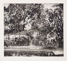 Norman Ackroyd RA captures the essence of Charleston Farmhouse's densely overgrown gardens in this atmospheric etching. Norman Ackroyd, Royal Academy Of Arts, Light Art, Landscape Art, Contemporary Artists, Short Film, Unique Art, Charleston, Light In The Dark