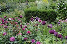 Claus Dalby garden in Denmark again. He has a wonderful eye.