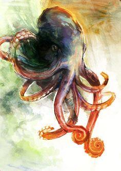Octopi =]