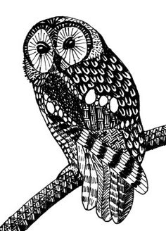 An awesome zentangled owl