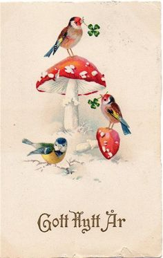 Vintage Greeting Cards, Vintage Christmas Cards, Christmas Pictures, Vintage Postcards, Trippy Mushrooms, Mushroom Tattoos, Fairy Pictures, Mushroom Art, Hand Painted Rocks