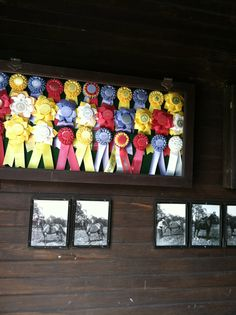 Something to do with all our goat show ribbons.