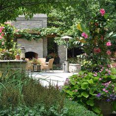 rosa Madnevilla Kletterpflanzen Blüten Sommer Saison schöne Garten Ideen
